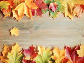 Fall Background. Maple Varicolored Fall Leaves On The Wooden Background With Free Space For Text. Co poster
