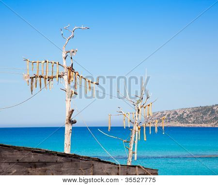 Dried fish peix sec typical salted food in Mediterranean Balearic islands