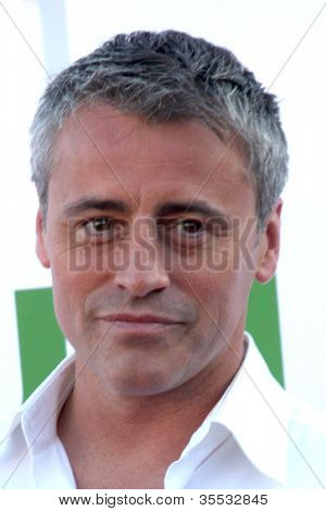 LOS ANGELES - JUL 29:  Matt LeBlanc arrives at the CBS, CW, and Showtime 2012 Summer TCA party at Beverly Hilton Hotel Adjacent Parking Lot on July 29, 2012 in Beverly Hills, CA