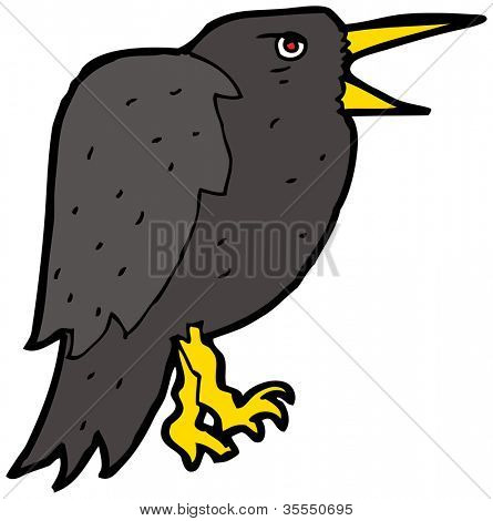 squawking crow cartoon