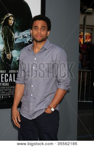 LOS ANGELES - AUG 1:  Michael Ealy arrives at the