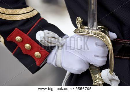 Sword Of Honour Guard