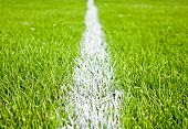 pic of football field  - soccer or football stripes on beautiful green grass - JPG