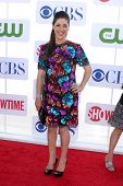 LOS ANGELES - JUL 29:  Mayim Bialik arrives at the CBS, CW, and Showtime 2012 Summer TCA party at Be