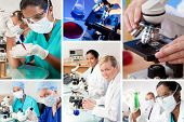 Two female medical or scientific researchers using microscopes working in a laboratory one Indian As