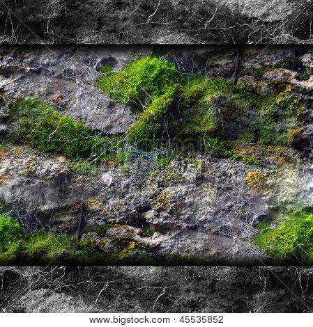 las paredes de la textura del molde moss y telarañas de fondo tu muro de mensajes