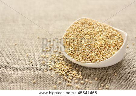 Grano de la quinoa en el tazón de fuente de cerámico blanco sobre fondo de tela de saco
