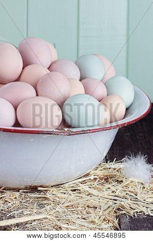Farm Raised Eggs