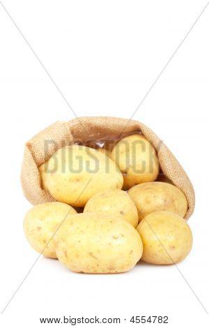 Burlap Sack With Potatoes