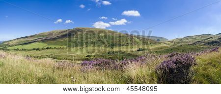Idyllic Rural, Brecon Beacons, Wales, Uk