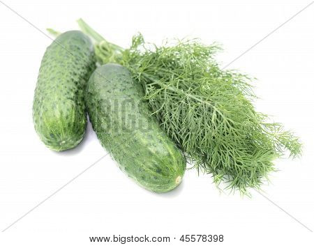 Green Dill And Cucumbers