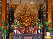 image of monk fruit  - Gold statue of the Buddha against different flowers and fruit - JPG