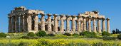 image of sicily  - Panorama of the temple of Selinunt Sicily Italy - JPG