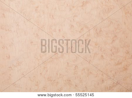 Bird's Eye Maple Wood Veneer