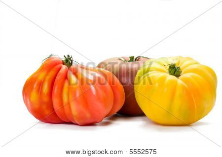 Heirloom Tomato Variety