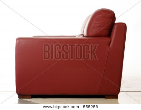 Red Leather Coach Side