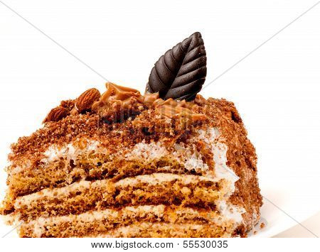 piece of delicious chocolate cake isolated