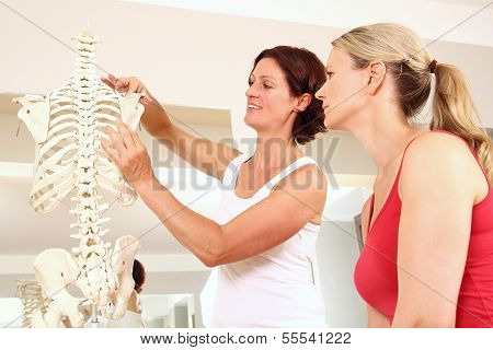 Professional Physiotherapist Explaining The Shoulder