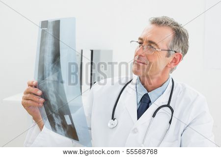 Concentrated male doctor looking at x-ray picture of spine in the medical office
