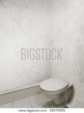 toilet bowl in grey interior