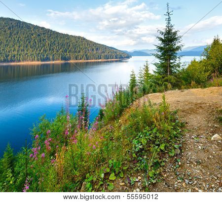 Alpine Lake Vidra Summer  View