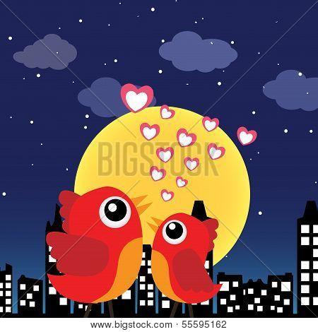 Birds in love at night