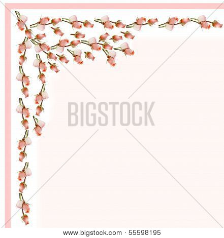 pink roses as decoration of letter