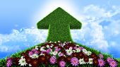 arrow from grass way, with flowers and sky, ecologic symbol