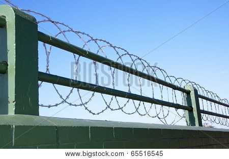 Coiled Razor Wire Barrier Atop Green Painted Brick Wall