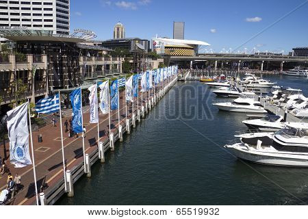 Boats Moored In The Marina At Darling Harbour.