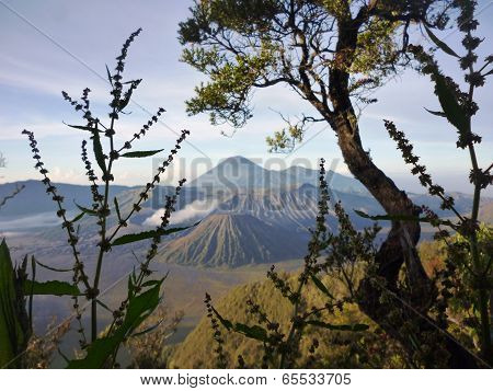 Mount Bromo National Park