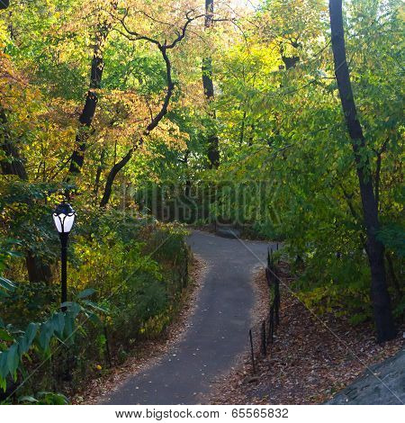 Trail In Central Park In Fall