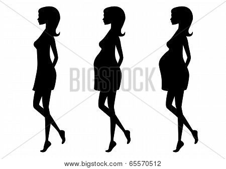 Silhouette of pregnant woman in three trimesters.