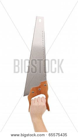Close up of hand holds saw.