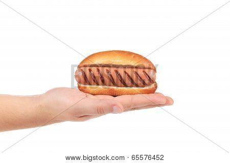 Hand hold hotdog