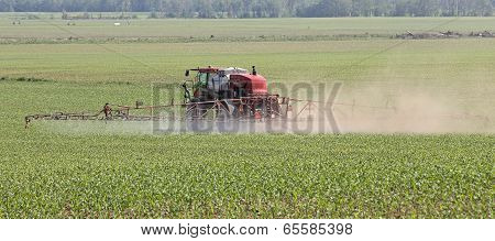 Spray Corn Field