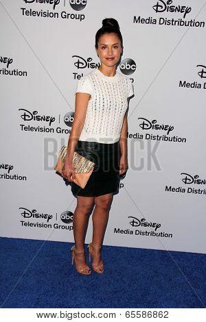 LOS ANGELES - MAY 19:  Hannah Ware at the Disney Media Networks International Upfronts at Walt Disney Studios on May 19, 2013 in Burbank, CA