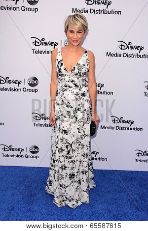 LOS ANGELES - MAY 19:  Chelsea Kane at the Disney Media Networks International Upfronts at Walt Disney Studios on May 19, 2013 in Burbank, CA