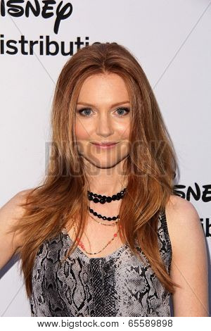 LOS ANGELES - MAY 19:  Darby Stanchfield at the Disney Media Networks International Upfronts at Walt Disney Studios on May 19, 2013 in Burbank, CA