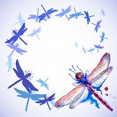 stock photo of dragonflies  - Vector greeting background with beautiful watercolor flying violet and blue dragonflies - JPG