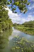 The River Stour, Warwickshire poster