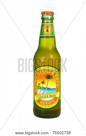 Hayward, CA - October 27. 2014: 12 fl oz bottle of Reed's Extra Ginger Brew, all natural Jamaican style Ginger Beer