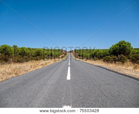 Asphalt Road On Hill