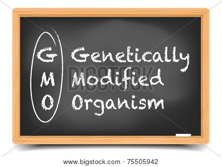 detailed illustration of a blackboard with GMO Term Explanation, eps10 vector, gradient mesh included