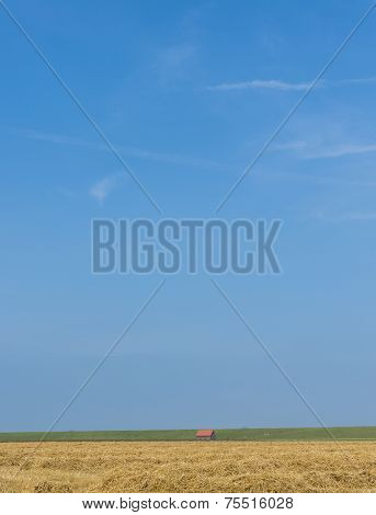 Wide Landscape With House Grainfield