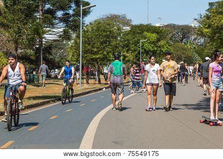 SAO PAULO, BRAZIL - SEPTEMBER 01: People do sports in Ibirapuera Park on September 01, 2013 in Sao Paulo, Brazil. Ibirapuera Park is the largest park in Sao Paulo