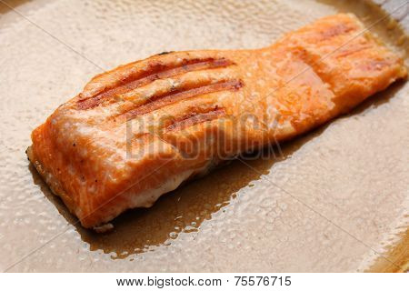 Grilled Salmon Fillets On The Plate
