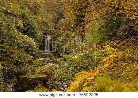 Jesmond Dene Waterfall In Autumn