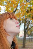 stock photo of freckle face  - Dreamy red hair girl face with freckles against red autumn foliage taken closeup - JPG