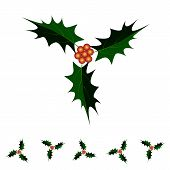 picture of holly  - Illustration of Holly Berries and Leaves on Holly Twig Sign for Christmas Celebration Isolated on White Background - JPG